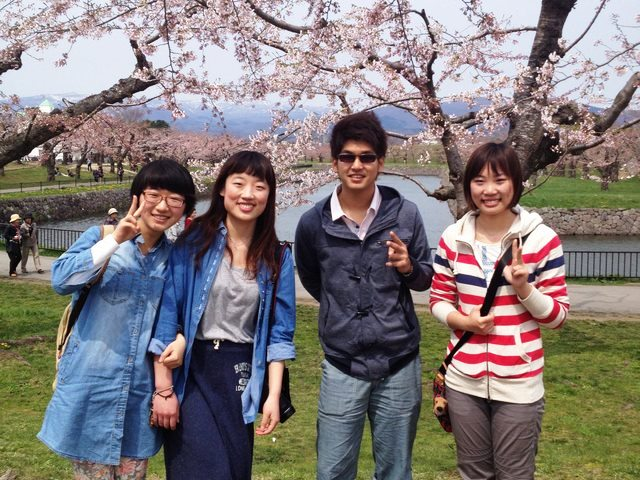 Why don't you come to Hakodate in spring to see cherry blossoms?